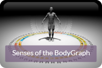 Rave Anatomy 1.1 - The Senses of the BodyGraph