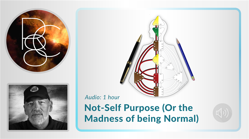 Not-Self Purpose - Or the Madness of Being Normal