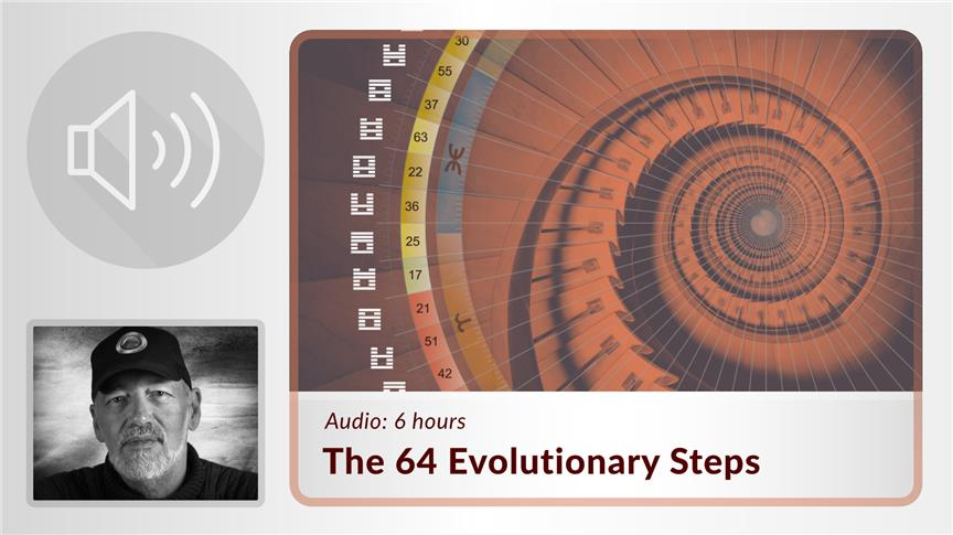 The 64 Evolutionary Steps