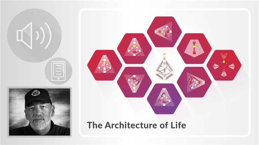 The Architecture of Life