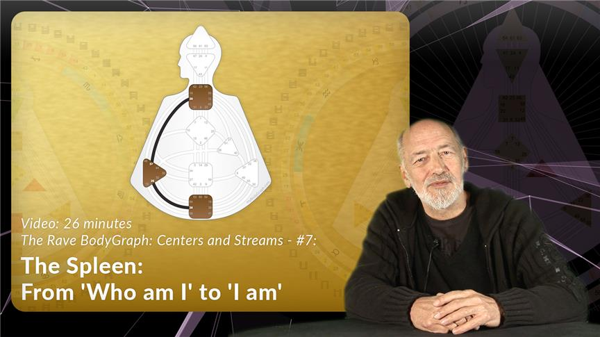 The Spleen: From 'Who am I' to 'I am'
