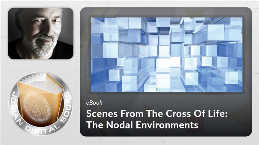 Scenes From The Cross Of Life: The Nodal Environments